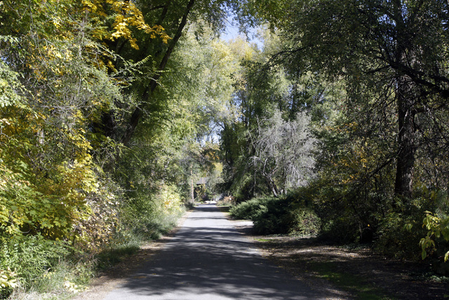 This undated photo shows the private tree-lined driveway near Walker Lane, in Holladay, Utah, where Mitt Romney said he is planning to build a home. His study features a book case that swivels ope ...