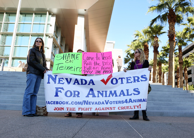 Donielle Hall, left, and Terri Cornell, with Nevada Voters for Animals, gather in front of the Regional Justice Center Wednesday. The group was protesting against Justin Teixeira, a University of  ...