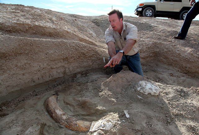 Eric Scott, curator of paleontology at the San Bernadino Museum in southern California, points towards the fossilized tusk of a Columbia Mammoth believed to be 16,000 years old, on Thursday, Dec.  ...