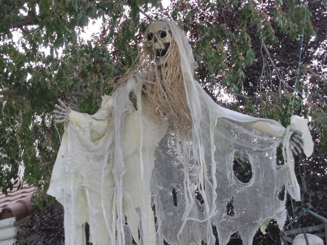 A ghost hangs from a tree in Rictor Riolo's Halloween display. (Special to View)