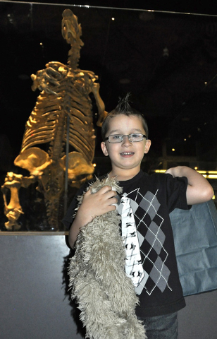 Caden Burt holds his winnings for picking the name of the fossil ground sloth. Caden won a plush sloth and gift bag and his name is added to the permanent exhibit. Shasta Ground Sloth in backgroun ...