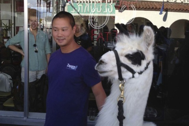 Tony Hsieh, seen with a llama in downtown Las Vegas. (Norm Clarke photo)