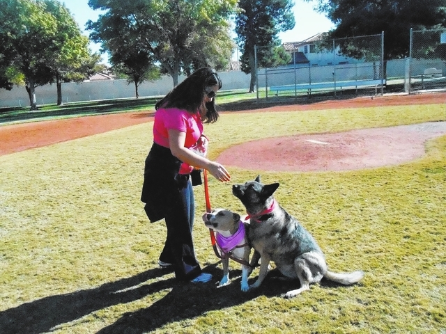 Susan Sayegh gives her dogs Sadie, left, and Lily a treat at Green Valley Park. (Michael Lyle/ Las Vegas Review-Journal)