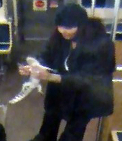 This security camera image provided by the Chicago Transit Authority on Wednesday, Nov. 13, 2013 shows a woman with a two-foot-long alligator aboard a CTA Blue Line train early in the morning of N ...