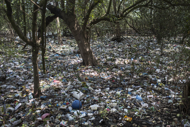 In this Oct. 23, 2013 photo, trash litters a forested area on the shores of Guanabara Bay in Rio de Janeiro, Brazil. Unless Brazil makes headway in cleaning up its waters, experts warn the games c ...
