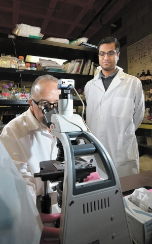 Dr. Ernesto Abel-Santos, left, checks on the progress of an experiment with graduate assistant Sabyasachy Mistry on the UNLV campus at 4505 S. Maryland Parkway in Las Vegas on Friday, Nov. 8, 2013 ...