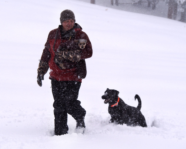 Curtis Raulerson, of Las Vegas, holds Maya as Dakota follows through about nine-inch deep snow at Lee Canyon Snow Play area on Mt. Charleston, Friday, Nov. 22, 2013. The Nevada Highway Patrol is r ...