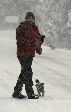 Curtis Raulerson, of Las Vegas, walks through heavy snowfall with his dog Maya at Lee Canyon Snow Play area on Mt. Charleston, Friday, Nov. 22, 2013. The Nevada Highway Patrol is requiring chains  ...