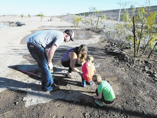 Master Gardeners Make Difference At Cornerstone Park U2013 Las Vegas  Review Journal