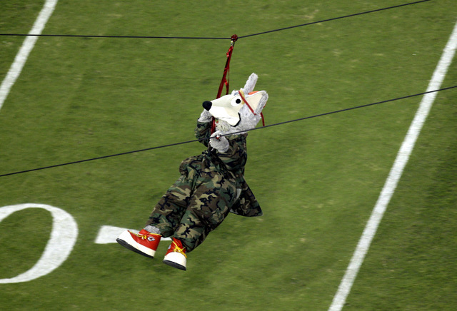 Kansas City Chiefs mascot KC Wolf rides on a zip line before an NFL football game. Dan Meers, who sometimes plays KC Wolf, is in stable condition after a weekend accident while rehearsing a zip li ...