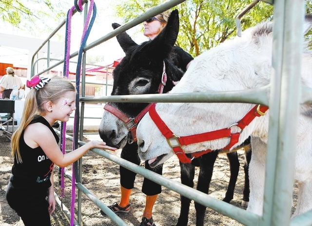 Sophia O'Neal, left, feeds a donkey at the Peaceful Valley Donkey Rescue area during the Gold Butte Days street festival Saturday, Oct. 19, 2013, in Mesquite, Nev. The festival, which took place i ...