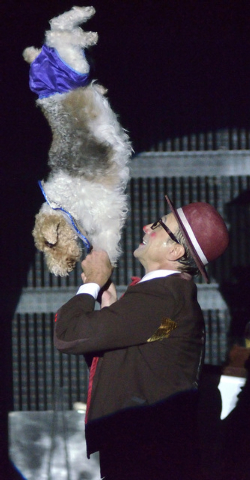 """Gregory Popovich performs with one of his canine co-stars during the """"Popovich Comedy Pet Theater"""" show in the V Theater at the Miracle Mile Shops in the Planet Hollywood hotel-casino at ..."""
