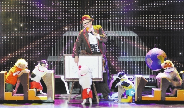 """Gregory Popovich performs with some of his canine co-stars during the """"Popovich Comedy Pet Theater"""" show in the V Theater at the Miracle Mile Shops in the Planet Hollywood hotel-casino a ..."""