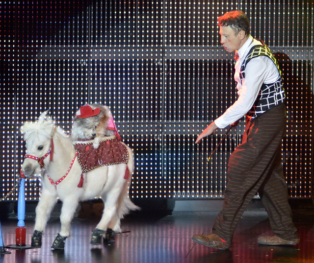 """Gregory Popovich performs with a pony and dog during the """"Popovich Comedy Pet Theater"""" show in the V Theater at the Miracle Mile Shops in the Planet Hollywood hotel-casino at 3500 Las Ve ..."""