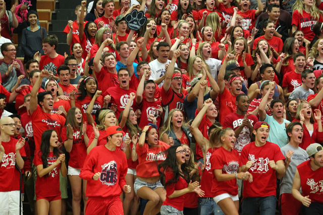 Coronado fans cheer as their team goes on to defeat Palo Verde in the championship game of the Division I Girls Volleyball State Tournament at Green Valley High School in Henderson on Saturday, No ...