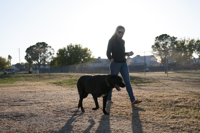 Summerlin resident Kara Easton, a finalist in the Beneful Dream Dog Park Contest, walks her dog Bart, a black labrador mix, at Woofter Family Park, 1630 N. Rock Springs Drive, Nov. 16. Easton hope ...