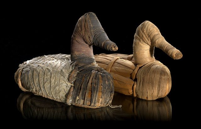 Duck decoys, circa 400 BC-AD 100, are in the National Museum of the American Indian of the Smithsonian Institution. (Courtesy/Ernest Amoroso)