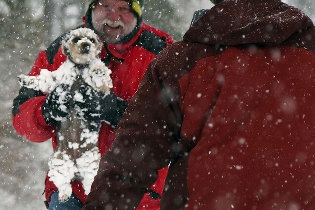 Jack Dempsey, of Las Vegas, hands Maya to her owner, Curtis Raulerson, of Las Vegas, right, at Lee Canyon Snow Play area on Mt. Charleston, Friday, Nov. 22, 2013. The Nevada Highway Patrol is requ ...