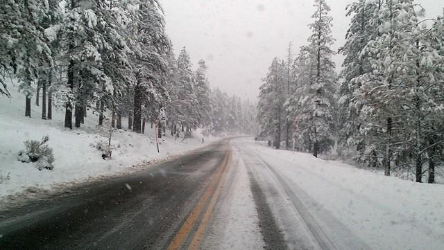 Snow sticks to the road on Mount Charleston on Friday. (Courtesy, Randy Fujita)