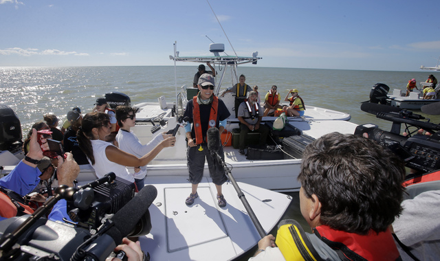 NOAA strandings official, Liz Stratton, informs reporters the pod in deeper water could reach as many as 30 animals and that they were about 11 miles offshore at midday,Thursday, Dec. 5, 2013, in  ...