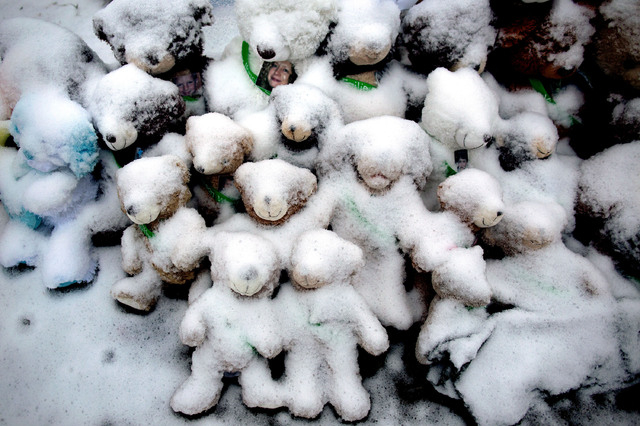 In this Dec. 25, 2012 file photo, snow-covered stuffed animals with photos attached sit at a makeshift memorial in Newtown, Conn. Adam Lanza opened fire inside the Sandy Hook Elementary School on  ...