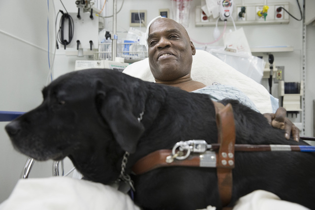 Cecil Williams smiles as he pets his guide dog Orlando in his hospital bed following a fall onto subway tracks from the platform at 145th Street, Tuesday, Dec. 17, 2013, in New York. The blind 61- ...