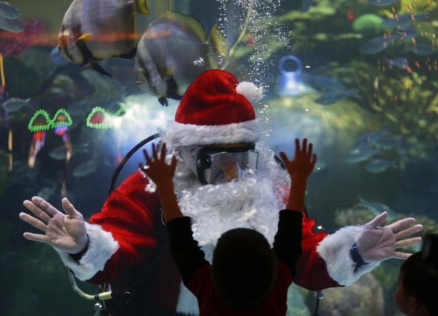 In this Sunday, Dec. 9, 2012, file photo, Jerry Cowley, aquatic safety manager at the Silverton Hotel-Casino interacts with children as an underwater Santa Claus, at the casino's aquarium in Las V ...
