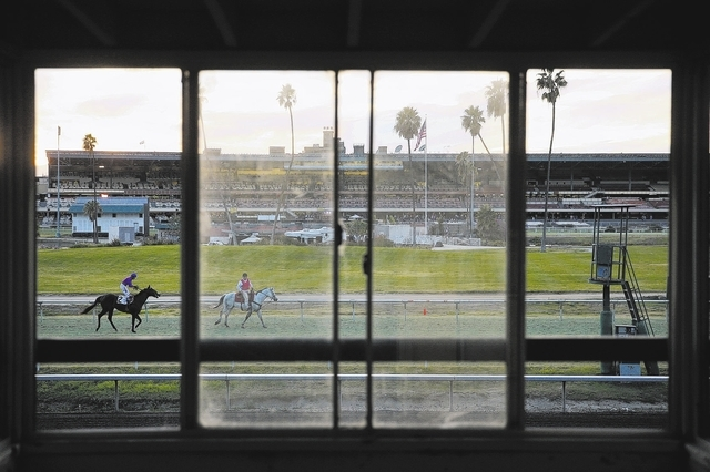 Jockey Rafael Bejarano, left, rides Bourne Hot along the track after a race at Betfair Hollywood Park on Sunday, Dec. 15, 2013, in Inglewood, Calif. After 75 years of thoroughbred racing, Betfair  ...