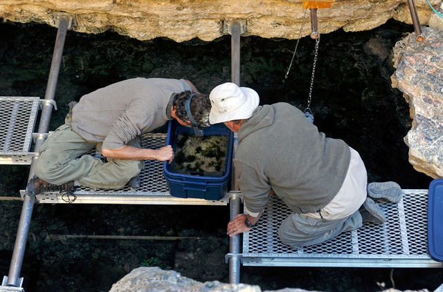 Olin Feuerbacher, left, aquaculturist at the Ash Meadows Fish Conservation Facility, and volunteer Hal Fairfield examine a spawning mat that was collected from the water at Devil's Hole on Nov. 25 ...