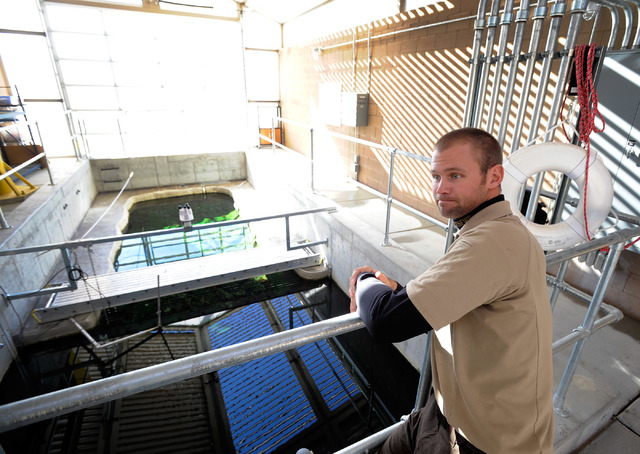 Facility manager Darrick Weissenfluh of the Ash Meadows Fish Conservation Facility stands by the replica of the Devil's Hole pupfish habitat on Nov. 25, 2013. The newly open facility, located abou ...