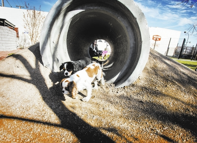 Casey,left,  and Kaylie play at the membership-based  dog facility at Fremont Street and 9th Street on Monday, Dec. 16, 2013. The 5,000 square feet play area is schedule to open on Saturday. The p ...