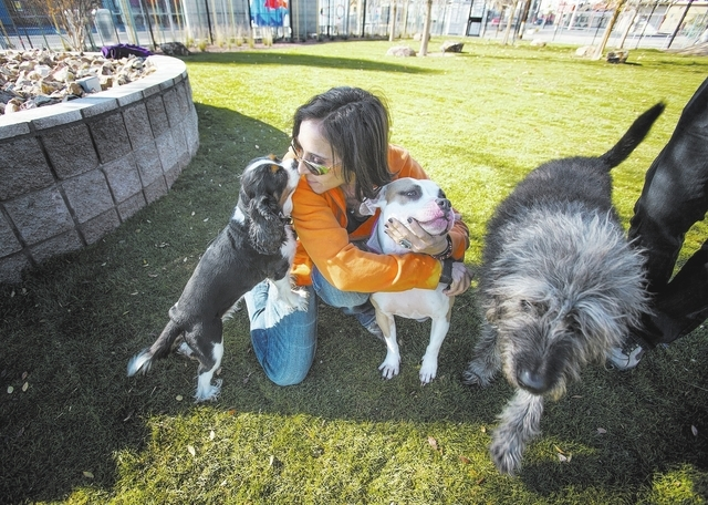 Cathy Brooks plays with Casey, left and Latte at the membership-based  dog facility at Fremont Street and 9th Street on Monday, Dec. 16, 2013. The 5,000 square feet play area is schedule to open o ...