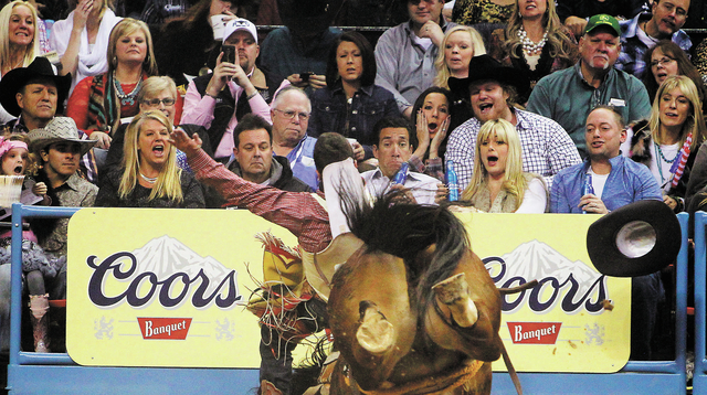 Caleb Bennett draws the fan's attention during the Bareback Riding event on day 7 of the Wrangler National Finals Rodeo at the Thomas and Mack Center in Las Vegas on Dec. 11, 2013. (Jason Bean/Las ...