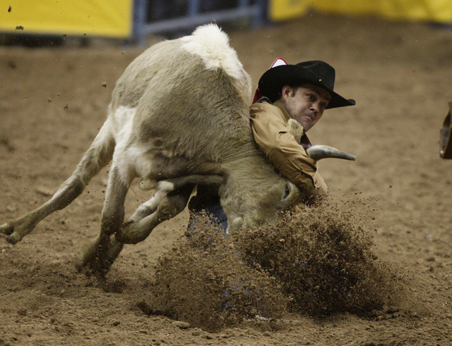 Bray Armes takes down a steer in the steer wrestling event on the third night of the National Finals Rodeo at the Thomas & Mack Center in Las Vegas Saturday, Dec. 7, 2013. (John Locher/Las Vegas R ...