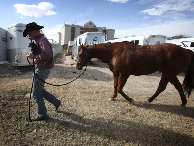 National Finals Rodeo team roper contestant Turtle Powell from Stephenville, Texas, walks with his dog, Ziggy, while his horse trails him at the National Finals Rodeo livestock corrals near the Th ...