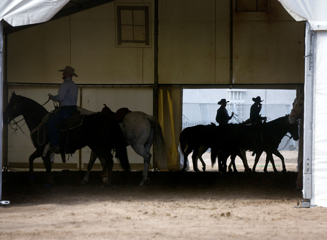 National Finals Rodeo team roper contestants are in the cool-down tent behind the Thomas & Mack Center on Tuesday. (Jeff Scheid/Las Vegas Review-Journal)