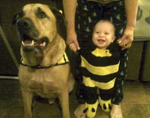Jeremiah Eskew-Shahan, right, is pictured with  the family dog, Onion, in this undated family photo. Onion, who had recently turned 6 years old, killed the boy after the boy's first birthday party ...