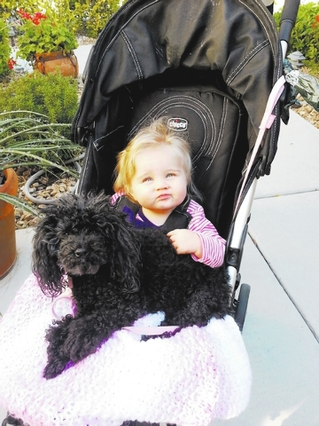 "Susie Russell Wagner of Summerlin said, ""My great-granddaughter,  Briannah, and my 12-year-old poodle, Mabel, went on a 15-minute walk together."""