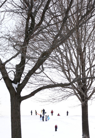 Sledding enthusiasts take to Cricket Hill at Montrose Beach Park Friday, Jan. 3, 2014, in Chicago. Single-digit temperatures are hitting Illinois after the state was blanketed in snow. Meanwhile,  ...
