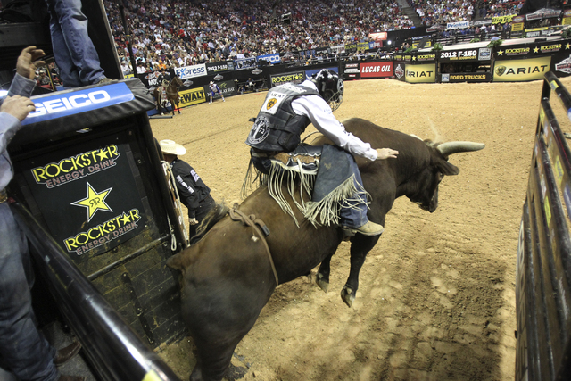 Cord McCoy of Tupelo, Okla., rides Bushwacker out of the chute during the Professional Bull Riders World Finals on Oct. 28, 2011. (K.M. Cannon/Las Vegas Review-Journal)