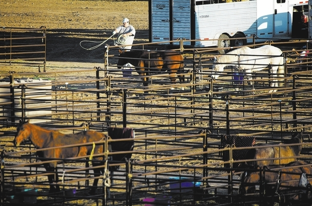 A man as seen at a horse corral outside Wickenburg, Ariz.  Monday, Nov. 18, 2013 . Nevada and Arizona lawmakers and businessmen are supporting a proposal to create a new interstate to connect Mexi ...