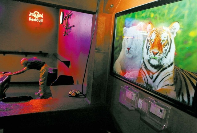 Nick Modi, left, plays billiards near tiger artwork that hangs on the wall at Blind Tiger Thursday, Jan. 16, 2014, in Las Vegas. Blind Tiger, which is located at 6295 S. Pecos Rd., is a neighborho ...