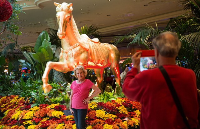 Barbara Simon has her photo taken by her husband, Jay, while vacationing on their 48th anniversary at the Wynn on Thursday, Jan. 30, 2014. (Samantha Clemens/Las Vegas Review-Journal)