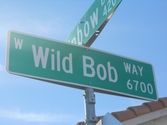 Wild Bob Way, pictured Jan. 26 at the road's intersection with Compass Rose Way, near North Rainbow Boulevard. Built in the early 90s, Wild Bob stands out from the mostly  floral- or maritime-them ...