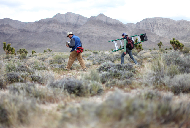 JESSICA EBELHAR/LAS VEGAS REVIEW-JOURNAL Researcher Chris Smith, left, and field assistant Candace Fallon walk through the Mojave Desert while conducting research on Joshua trees and Yucca moths i ...