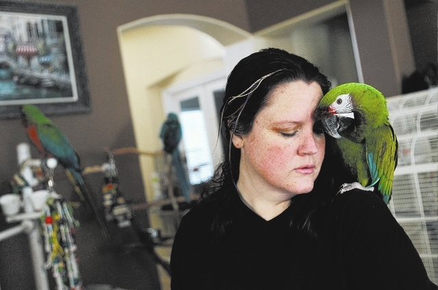 "Rehoming Director Skye Marsh of the Southern Nevada Parrot Education Rescue & Rehoming Society shares a moment with ""Sintra,"" a Military Macaw, in her home in Las Vegas on Jan. 28, 2014. ..."