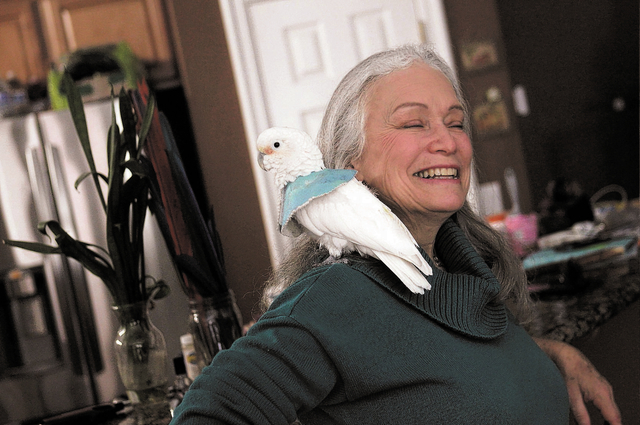 "Madeleine Franco, Executive Director of the Southern Nevada Parrot Education Rescue & Rehoming Society, hangs out with ""Coral,"" a Goffins Cockatoo, in Las Vegas on Jan. 28, 2014. (Jason  ..."