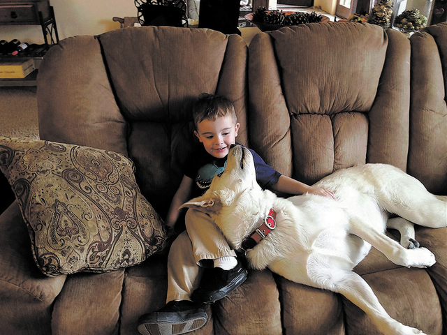 "Las Vegas resident Ray Flynn said, ""This is my 2-year-old grandson Carter Coulston with my 1-year-old dog Kacey, a Labrador/retriever mix. These two are the best of friends."""