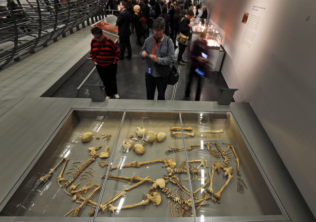 Visitors look at some of the 50 headless skeletal remains of young men found in a mass grave on England's south coast, apparently a Viking raiding party that failed, at a new exhibition entitled ' ...