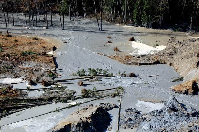 A view of the damage from Saturday's mudslide near Oso, Wash. At least eight people were killed in the 1-square-mile slide that hit in a rural area about 55 miles northeast of Seattle. Several peo ...